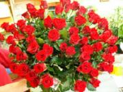 U5 70 růží - kytice kterou neunesete