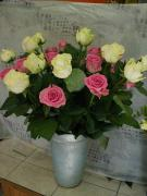R51 Růže - délka 70cm bílá