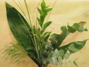 R67 Zeleň, různé druhy, 1 ks
