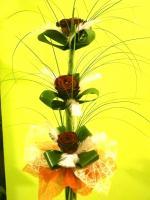 U6 Růže peříčko