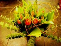 A2 kytice tulipánů