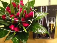 D7 Velká tulipánová sada
